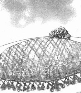 【カレーリゾットオムライス】