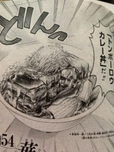 【トンポーローカレー丼】
